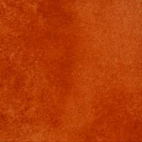 Керамическая клинкерная плитка и ступени серии Cadra -New цвет E524 male